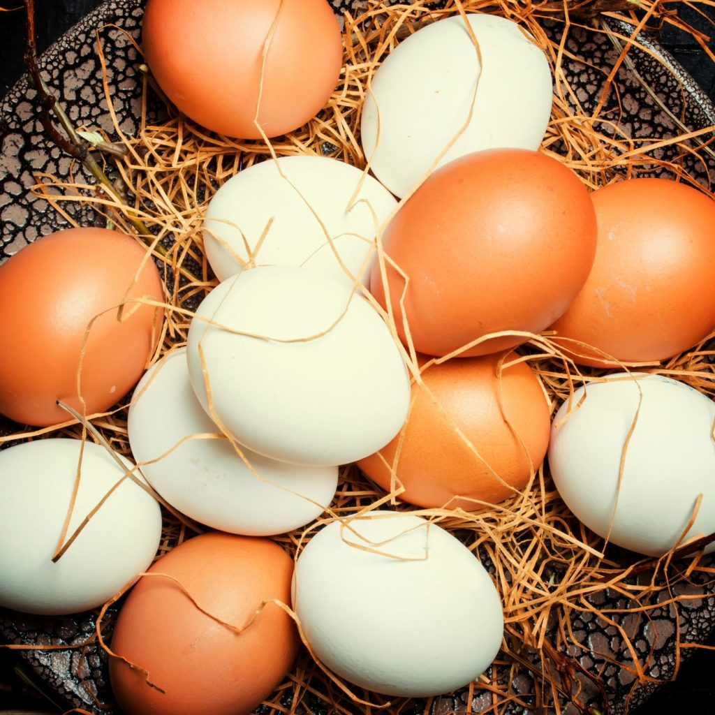 Eggs in bowl | Featured image for fresh egg supplier.