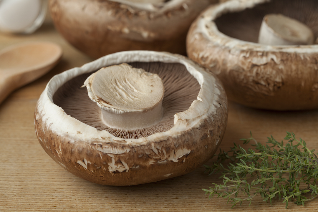 Wholesale Mushrooms Mushroom Supplier Chef Direct