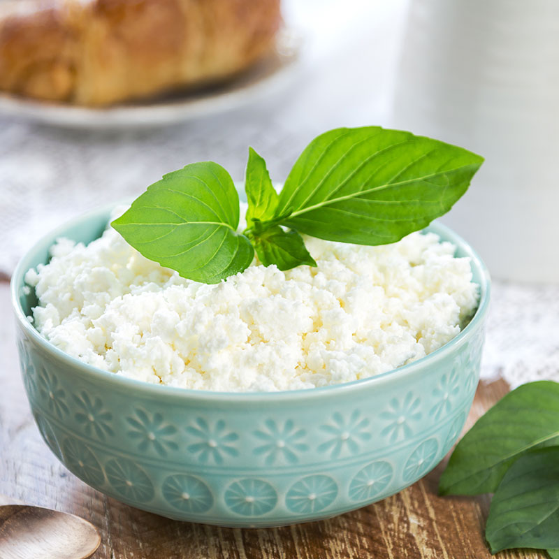 Ricotta cheese | Featured image for cheese wholesaler.
