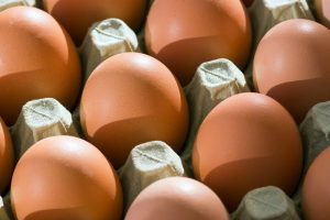 Image of eggs in tray | Featured image for What are free range eggs blog.